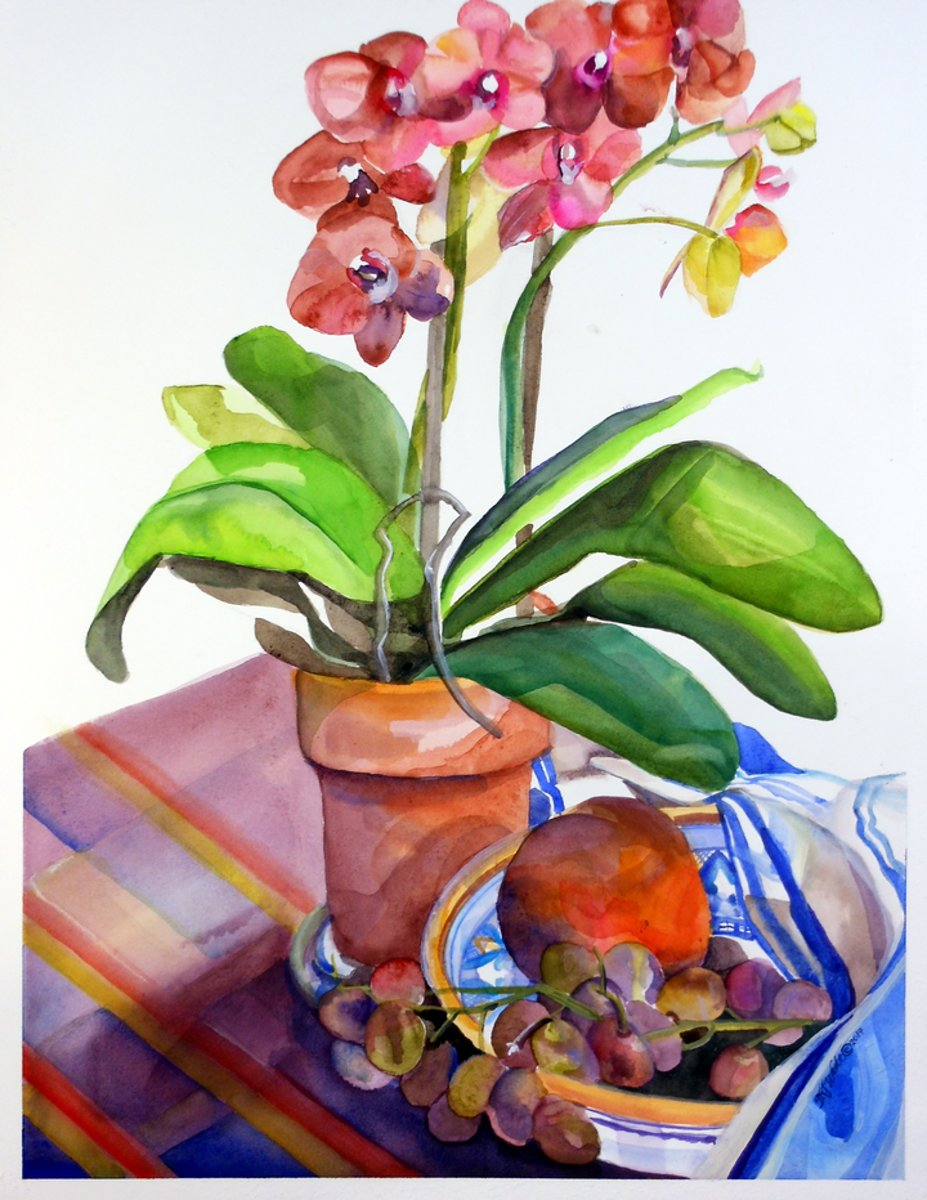 Orchids Away